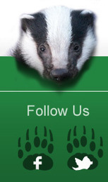 Liz Truss Meeting : Update - Badger Trust | Bovine TB, badgers and cattle | Scoop.it