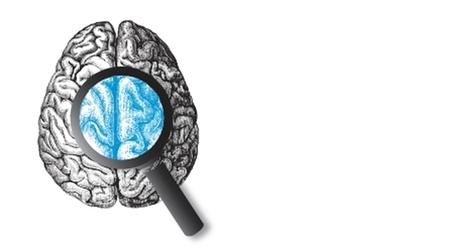 Entre fascination et rigueur scientifique : les dérives des neurosciences | Canadian Education Association (CEA) | Centre François-Michelle | Scoop.it