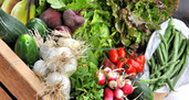 Une campagne sur le «bio et local» dans toute l'Ariège pour consommer autrement | Midi Pyrénées | Scoop.it