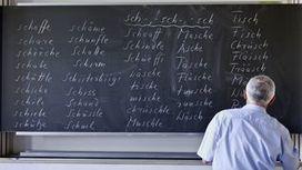 Japonais et Finlandais sont les adultes les mieux formés dans l'OCDE   PEICA   Scoop.it
