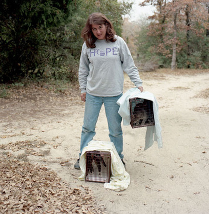 Cat Trapping, Neutering and Release Photographed by Sandy Carson | Feral Cats | Scoop.it