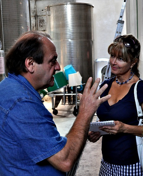 Top wineries of Pergola in Le Marche, Italy, Part III | Wines and People | Scoop.it