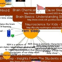Learn about Rem Sleep on instaGrok, the research engine   High-Fidelity Open Learning Resources   Scoop.it