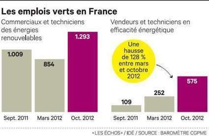 Une transition énergétique prometteuse en emplois   DNTE   Scoop.it