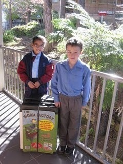 Kitchen Gardens in Schools: St Finbar's Mountain Devils are ... | School Kitchen Gardens | Scoop.it