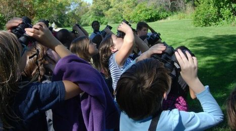 Birding as a Brain Break | Rainforest CLASSROOM: Inspiration, Resources,and More | Scoop.it