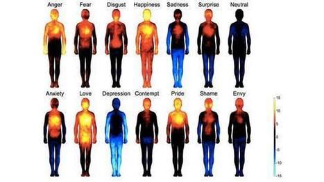 Η χαρτογράφηση των συναισθημάτων στο ανθρώπινο σώμα | for better life... | Scoop.it