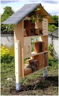 Graines de Jardiniers : les abris pour insectes   Les colocs du jardin   Scoop.it