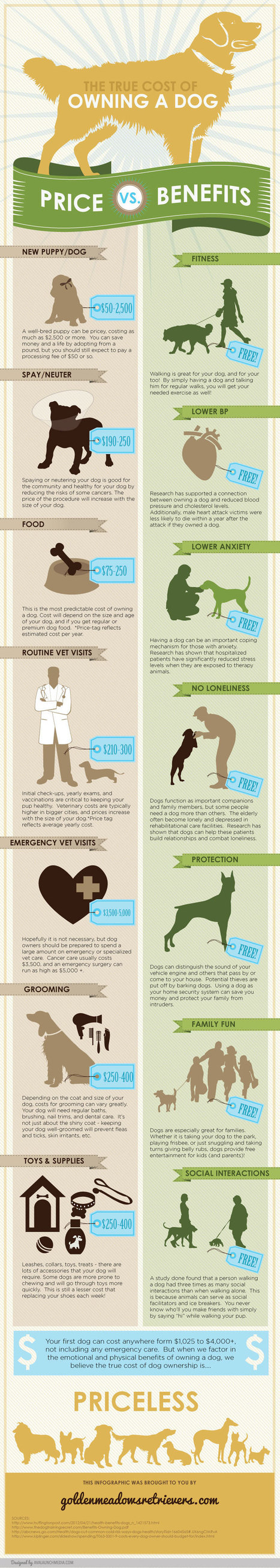 True Cost of Dog Ownership Infographic   Dog Care Guide   Scoop.it