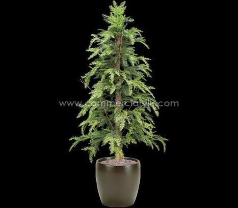 Artificial Sequoia Tree 5' - Commercial Silk Int'l | Artificial, Silk Trees Knowledge Center | Scoop.it