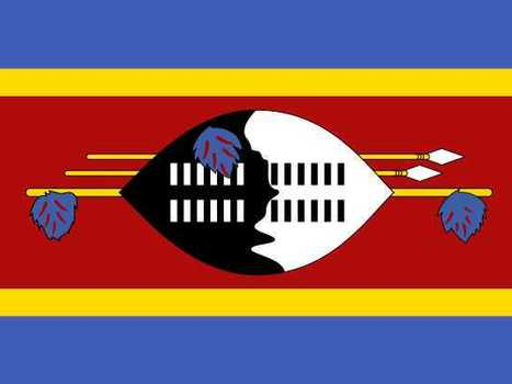 Witch Doctor Tax In Swaziland - Business Insider | Economics | Scoop.it