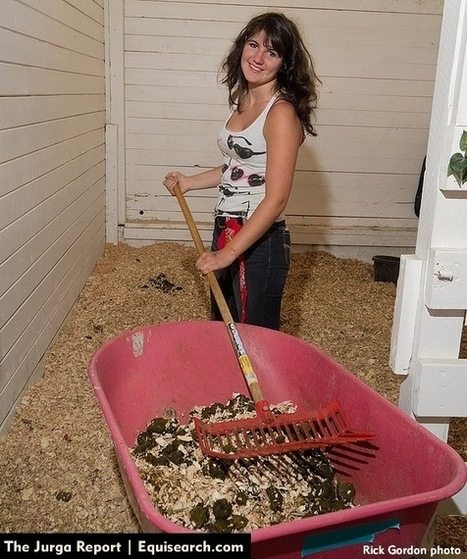 The Horse-Owning Gardener's Dilemma: Is Compost from the Manure Pile Safe for Vegetables?   Horse Industry News   Scoop.it