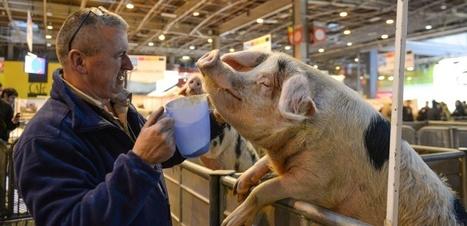 Des agriculteurs heureux, ça existe ! | LPA Gilbert Martin | Scoop.it