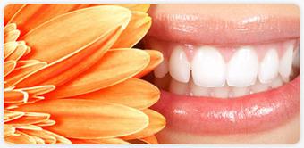 Zubni implanti, Implantanti zuba, Ugradnja implantata | Zubar Beograd | Scoop.it