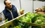 Du producteur au consommateur, un marché au bel appétit, Paniers bio, vente à la ferme : des entrepreneurs réinventent la distribution - Les Echos Entrepreneur | perspectives de valorisation du monde agricole | Scoop.it