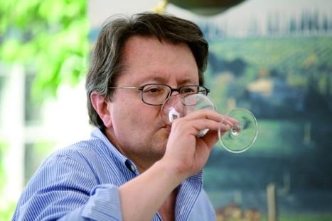 Napoleon Wineries in Le Marche: BoccadiGabbia, Civitanova Marche | Wines and People | Scoop.it