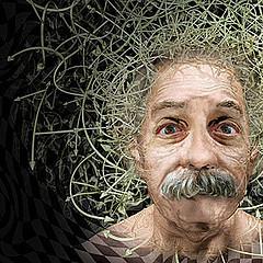 Ciencia Kanija » La gravedad surge a partir de la información cuántica | Ciència | Scoop.it