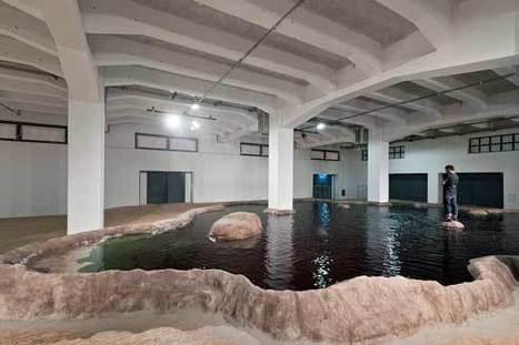 Souffle tropical sur la Biennale de Lyon   Art contemporain et culture   Scoop.it