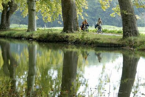 """Des euros pour le vélo   """"green business""""   Scoop.it"""