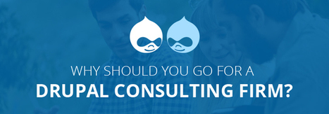 Why Should You Go for a Drupal Consulting Firm?   Drupal Web Design and Development   Scoop.it
