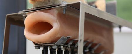 Freaky Robot Mouth Learns to Sing - IEEE Spectrum | iRobolution | Scoop.it