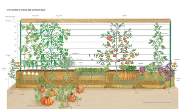 Joel Karsten's tips to create a straw bale garden | The library | Scoop.it