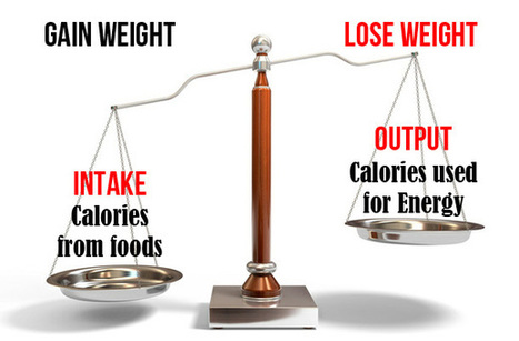 Meal Timing Debunked – Myth Or Fact? - Lifespan Fitness Blog | Wellness Life | Scoop.it