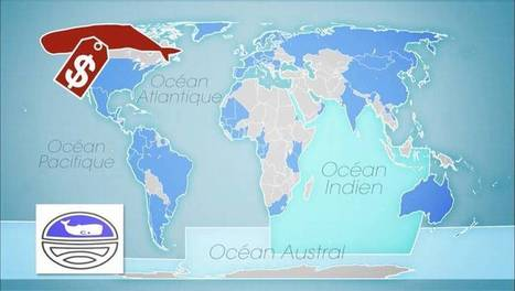Le Dessous des Cartes - Commerce des espèces menacées : thons rouges et baleines (2/2). | Cartes historiques et cartes d'Histoire | Scoop.it