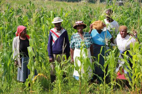 El Foro Rural Mundial ante el reto de impulsar la Agricultura Familiar | Agricultura | Scoop.it
