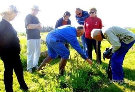 Monthureux-sur-Saône : le jardin partagé a besoin de bras | (Culture)s (Urbaine)s | Scoop.it