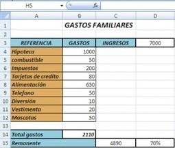 Descargar plantilla de excel para controlar gastos familiares | grafiprint | Scoop.it