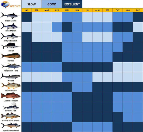 Fishing Chart of Costa Rica | Travel | Scoop.it