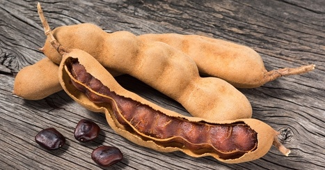 What Is #Tamarind? A Tropical #Fruit With #Health #Benefits | Nutrition Today | Scoop.it