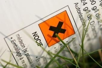 Plus de 700 pesticides - Journal de Québec | Abeilles, intoxications et informations | Scoop.it
