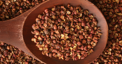 Szechuan peppers cause vibrator-like sensation | No Such Thing As The News | Scoop.it