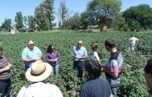 Técnicos del BID recorrieron campos chaqueños para corroborar ... - Diario NORTE | lineas crediticias | Scoop.it