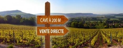 Vente directe du vin : 10 questions clefs pour définir une stratégie | Marketing Community - Dunod | Vin | Scoop.it