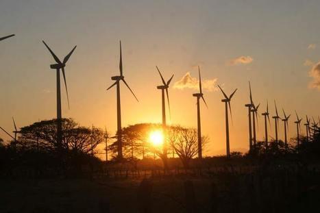 Lo gris de la energía 'limpia' - Noticias Voz e Imagen de Oaxaca, Chiapas y Tuxtepec | Activismo en la RED | Scoop.it
