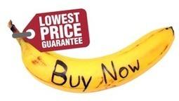 Le evoluzioni della vendita on-line e l'avvento dei comparatori di prezzo nel mercato dell'ecommerce | Curation, Copywriting and  ... surroundings | Scoop.it
