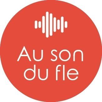 Correction phonétique fle: infographie | FLE phonétique | Scoop.it