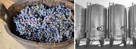 La levure - ce microbe essentielle | Latests news in Wine Fermentation | Scoop.it