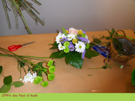 CFPPA des Pays d'Aude: CAP Fleuriste : ça fleure bon la rentrée! | Maraichage-Horticulture | Scoop.it