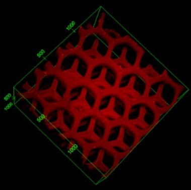3D printed hydrogel nanocomposites helps to detoxify the blood like a liver | 3D_Materials journal | Scoop.it