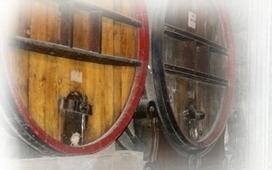(FR) (EN) - Glossaire du vin, Langage du vin | interfrance.com | Glossarissimo! | Scoop.it