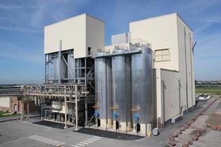 Micro-algues : Roquette lance la phase industri... | spiruline | Scoop.it
