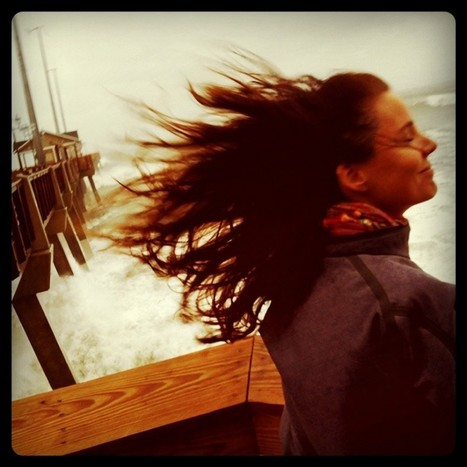 """""""the answer is blowin in the wind…"""" 