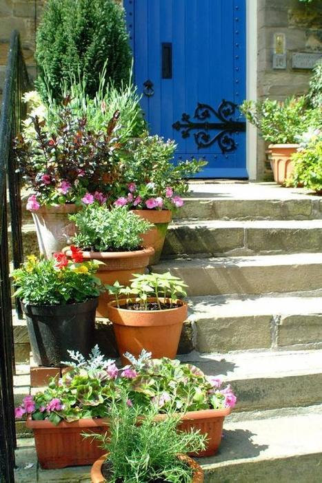Garden Design Ideas for Small Spaces | | Vertical garden | Scoop.it