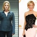 The Tatted Blogger: Who Is Anna Gunn From Breaking Bad? | Watch Breaking Bad Season 5 Second Half Online Now | Scoop.it
