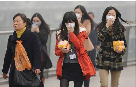 42 cool ways to control air pollution together | EVS | Scoop.it