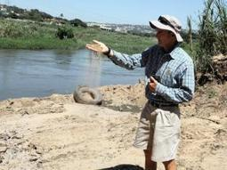Umgeni River 'one of dirtiest' in SA - IOL SciTech | IOL.co.za | Water Quality in SA | Scoop.it